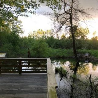 Winning walks: the trails not to miss in our backyard